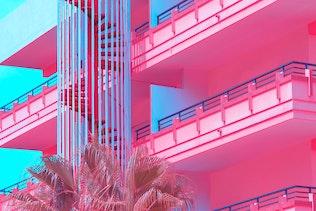 Minimal Urban Pink. tropical palm trees. Art fashion