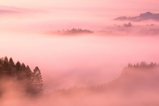 Beautiful Rolling Hills in Fog at Pink Pastel Sunrise in Fall